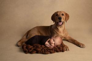 Baby-Shooting Göppingen: Mit Vierbeiner Luna und Baby Leo, 2 Wochen