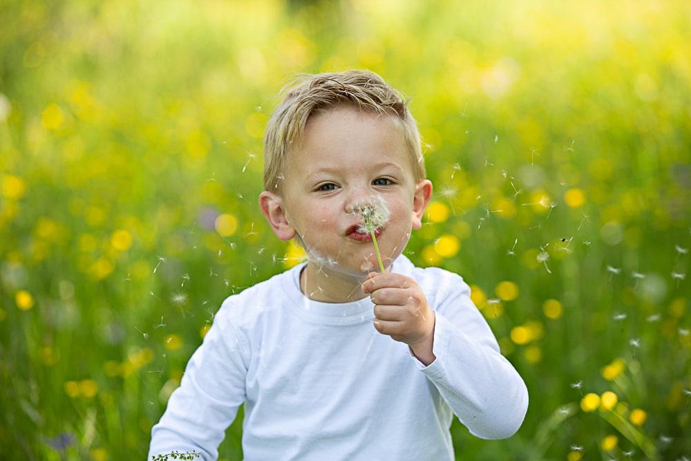 Kinderfotos Familienfotos Outdoor Natur Pusteblume